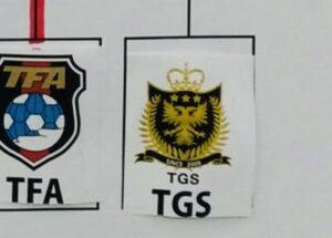 手越所属のサッカーチームTGSのロゴ?
