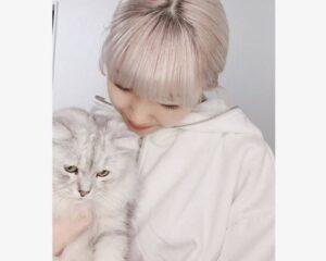 猫好きマユカが家で飼っている猫の名前は?