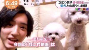 道枝駿佑の愛犬・ララの名前の由来や犬種・値段は?
