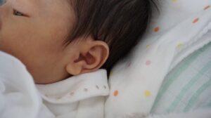 竹財輝之助の子供・娘の顔画像がそっくり、似てると話題!